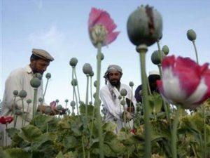 Opium Pictures